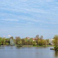 Разлив весенний 5 :: Виталий