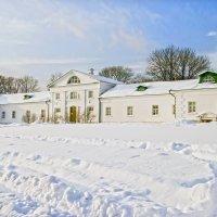 Зима в Ясной поляне :: Елена Чижова