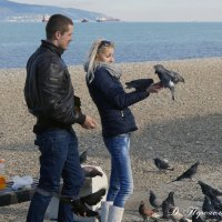 У моря с голубями :: Дмитрий Переяслов