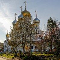 Зачатьевский монастырь :: Наталья Рыжкова