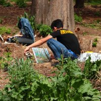 Юные художники в ботаническом саду :: Светлана