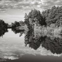Лесной край. :: Андрий Майковский