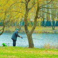 Ловись, рыбка! :: Игорь Герман