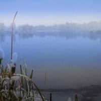 Тёплое утро в начале весны. :: Laborant Григоров