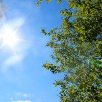 Прекрасный весенний день) :: Катя Бокова