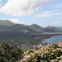 Папуа Новая Гвинея :: Антонина