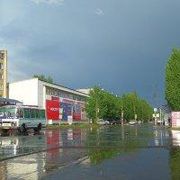 Мокрый апрель... :: Сергей Петров