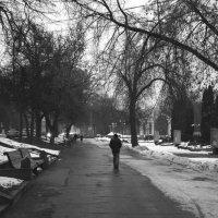 Пасмурным вечером в парке :: Николай Филоненко