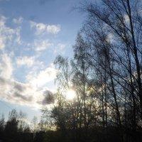 Апрельское небо :: BoxerMak Mak