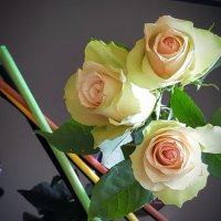 Розы в интерьере :: Ирина