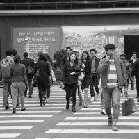 Seoul :: Irina Zubkova