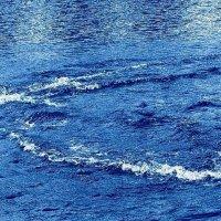 Лебедь. Круги на воде :: Nina Yudicheva