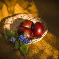 С Праздником Светлой Пасхи! :: Наталья Ерёменко
