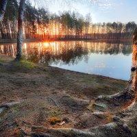 Озёрный рассвет...6 :: Андрей Войцехов