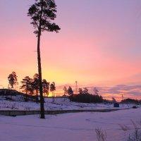 весенний рассвет в Сибири :: Мария К