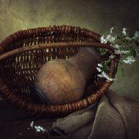Весна приходит в каждый дом :: Ирина Приходько