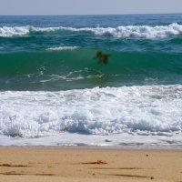 Морские привидения... :: Арина