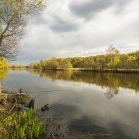 Рыбалка на старица Москва реки :: Наталия Горюнова