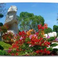 Сад Камней. :: Чария Зоя