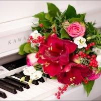 Piano :: Melany Kingston