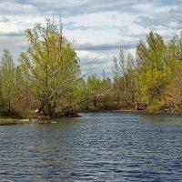 Пруд весной :: Андрей Ситников