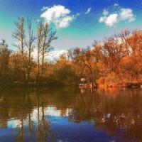 Озеро в апреле :: Ольга Назаренко