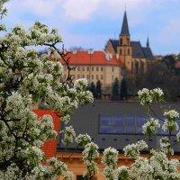 Прага :: ФОТО ОХОТНИК