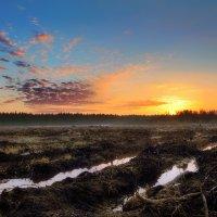 Рассвет прошедшего апреля.... :: Андрей Войцехов