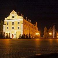 В свете ночных фонарей :: Елена Пономарева
