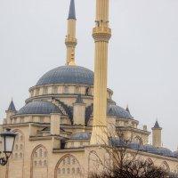 IMG_1085 Грозный, мечеть :: Олег Петрушин