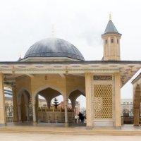 IMG_1102 Грозный, мечеть :: Олег Петрушин