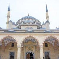 IMG_1105 Грозный, вход в мечеть :: Олег Петрушин