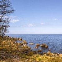 Ладожское озеро :: Алексей Герасимов