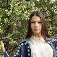 У яблони :: Вета Жаринова