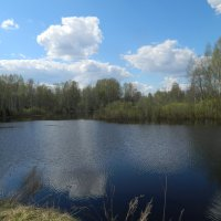 Ветерок весны :: Вячеслав