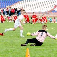 футбол :: владимир
