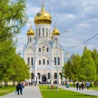 церковь :: Света Кондрашова