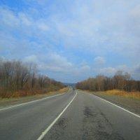 Федеральная трасса М60  Владивосток-Хабаровск. :: Татьяна ❧