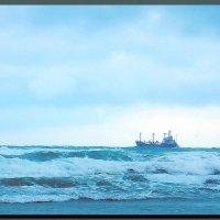 на море  шторм. :: Ivana