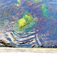 подводная весна :: Люша