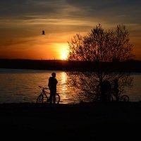тихая мелодия заката :: Натали Акшинцева