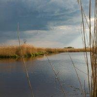 Дождь наступает с запада... :: Игорь Вишняков