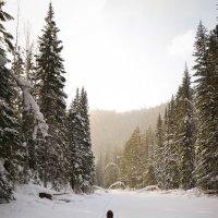 Дорога на легендарный Богунай :: Юлия Шако