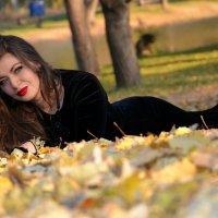 Осень :: Ирина Шимкина