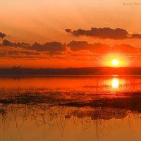 Рассвет на Плещеевом озере :: ЭН КА