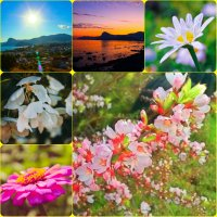 Скоро лето :: Юлия Доронина
