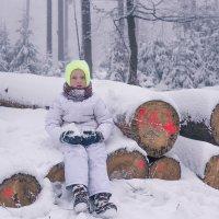 Зимний портрет :: Ешкин-Кот Дедушкин