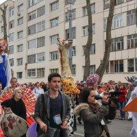 фестивальное шествие-3 :: Елена Байдакова