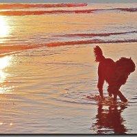 на прогулке у моря. :: Ivana