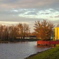 На рассвете у реки :: Елена Пономарева